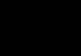Baambrugs Big logo